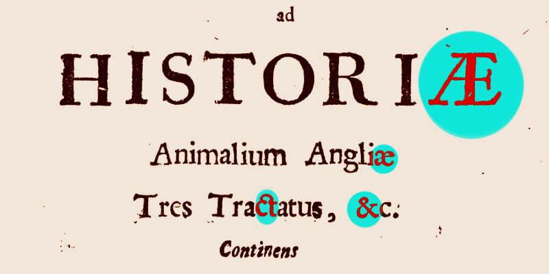 Ligatury nakarcie tytułowej Appendix ad Historiae Animalium Angliae