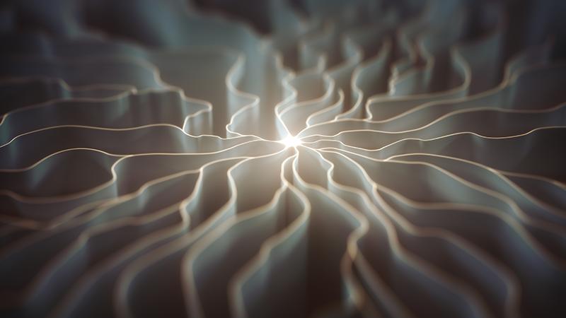 Cechy neurodesignu